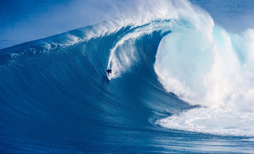 Surf Vacations